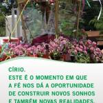laranjeiras_01